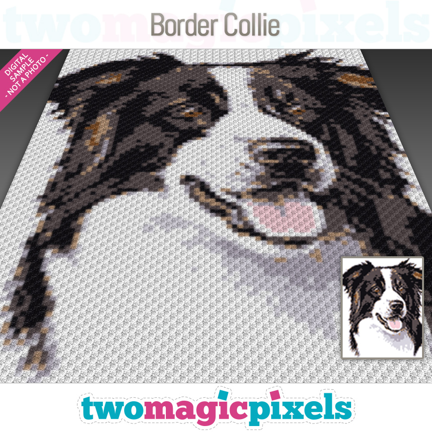 Border Collie by Two Magic Pixels