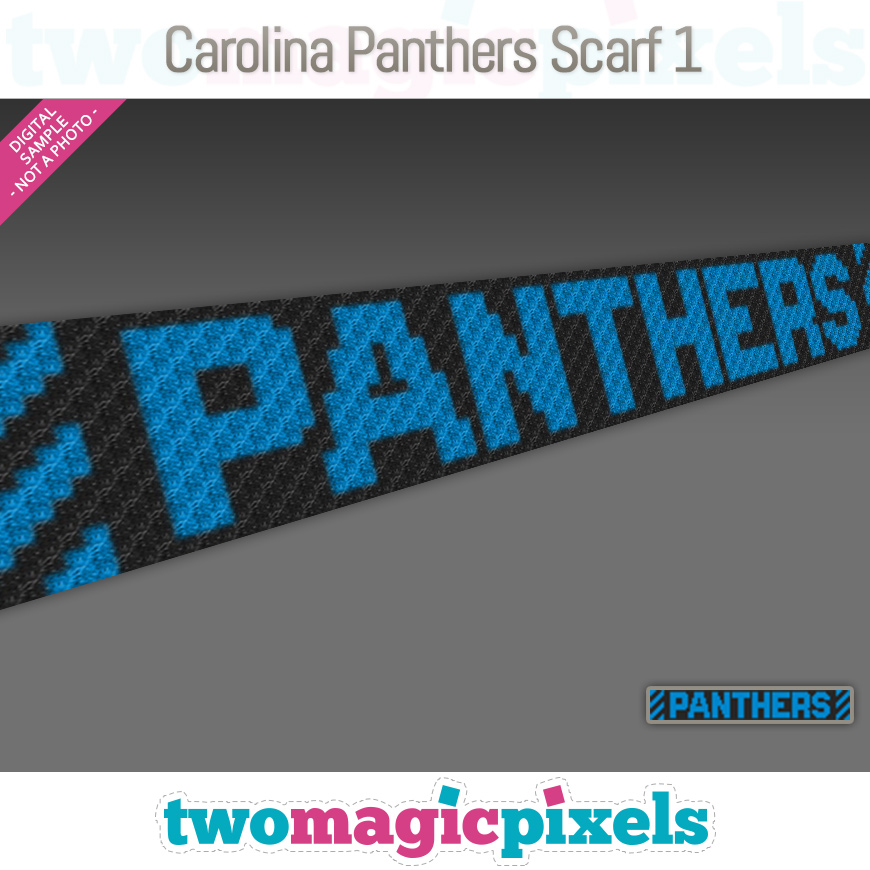 Carolina Panthers Scarf 1 by Two Magic Pixels