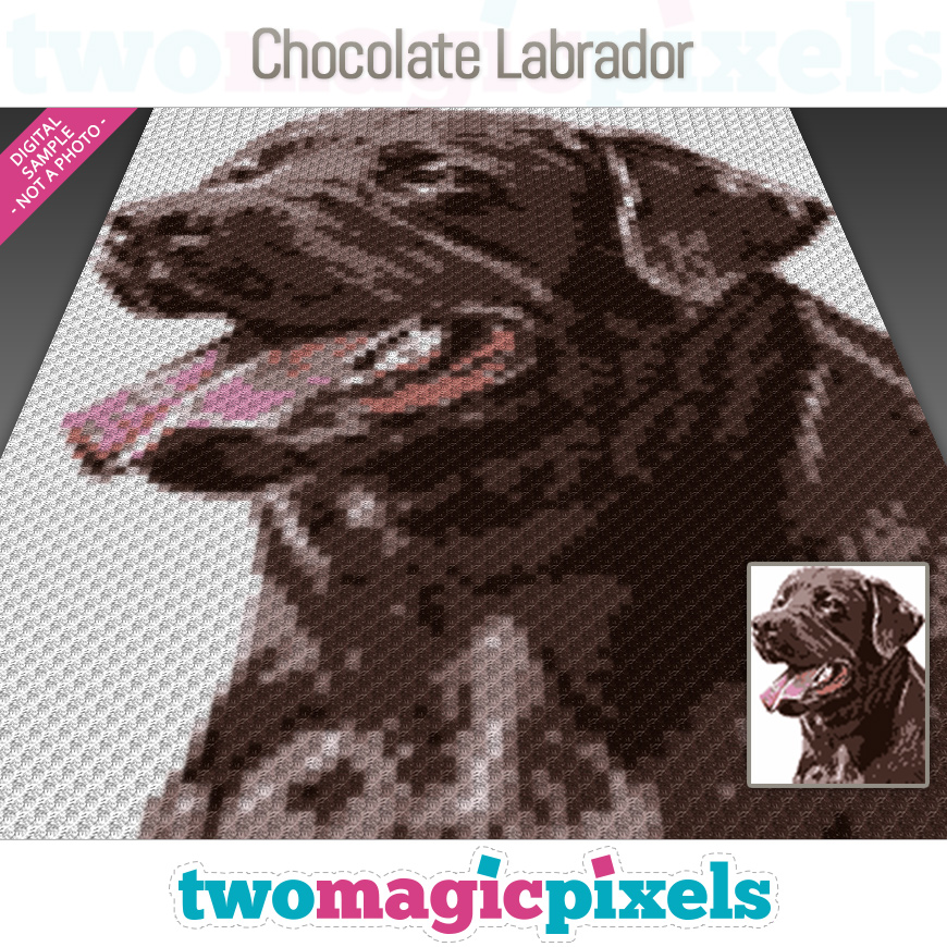 Chocolate Labrador by Two Magic Pixels