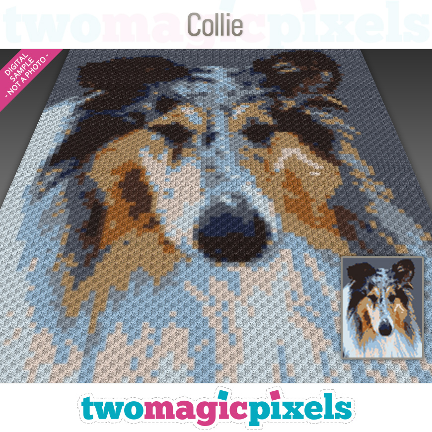 Collie by Two Magic Pixels