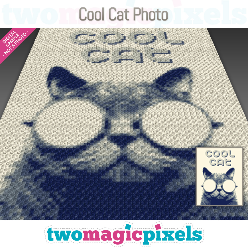 Cool Cat Photo by Two Magic Pixels