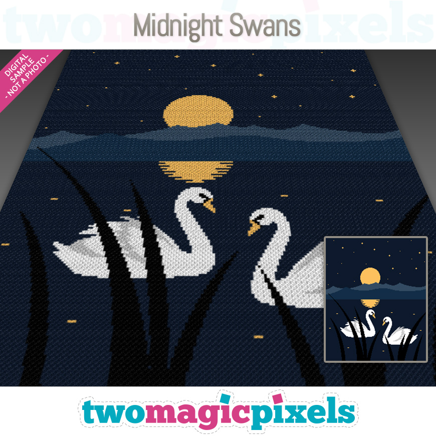 Midnight Swans by Two Magic Pixels