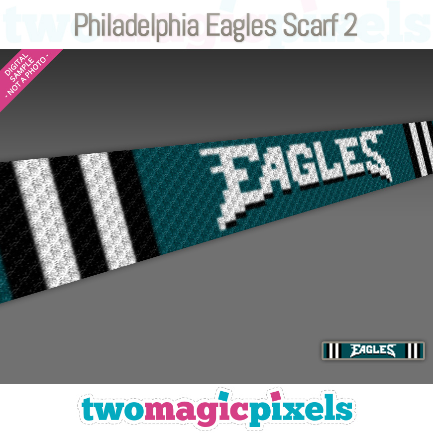 Philadelphia Eagles Scarf 2 by Two Magic Pixels