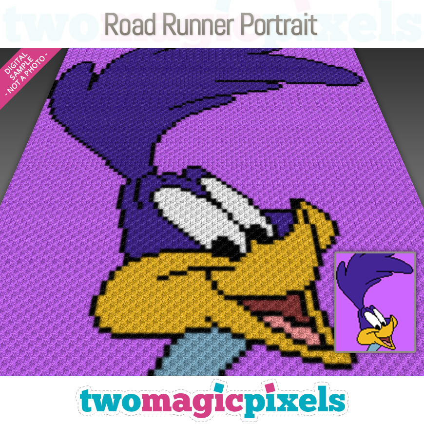 Road Runner Portrait by Two Magic Pixels