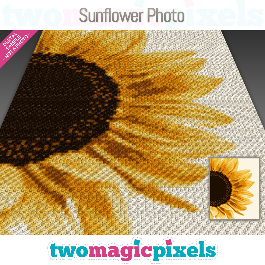 Sunflower Photo by Two Magic Pixels