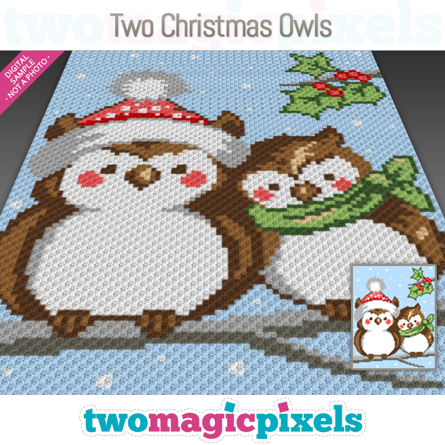Two Christmas Owls by Two Magic Pixels
